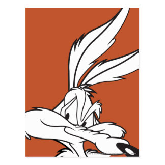 Wile E. Coyote Looking sournois Carte Postale