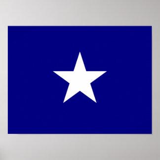 Witte Ster van de Vlag van Bonnie de Blauwe Poster