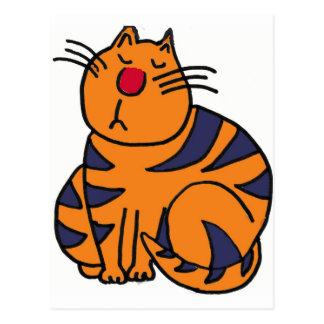 XX chat frais Carte Postale