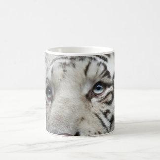 Yeux du tigre blanc mug