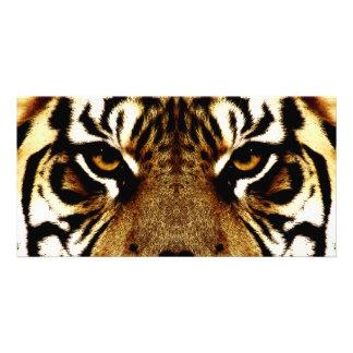 Yeux d'un tigre photocartes personnalisées