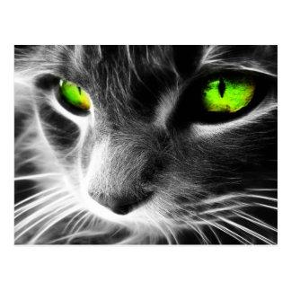 Yeux verts de chat gris carte postale
