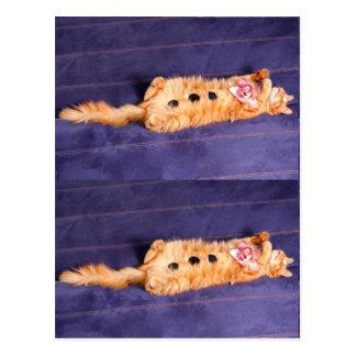 zen pour des chats, traitement de spa d'animal fam cartes postales