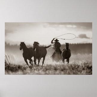Zwart-witte foto van de Paarden van een van de Poster