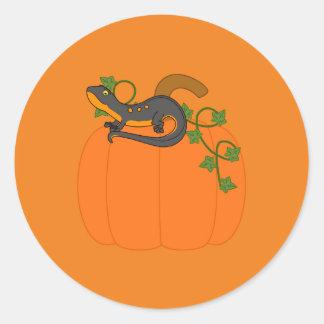 Zwarte & Oranje Newt op de Pompoen van Halloween Ronde Stickers